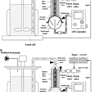 Process set-up for TFF- and ATF-based perfusion; P1, P2