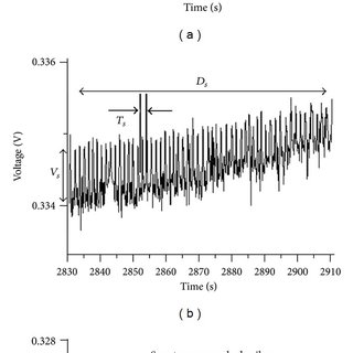 Spontaneous action potentials of the novel thread part