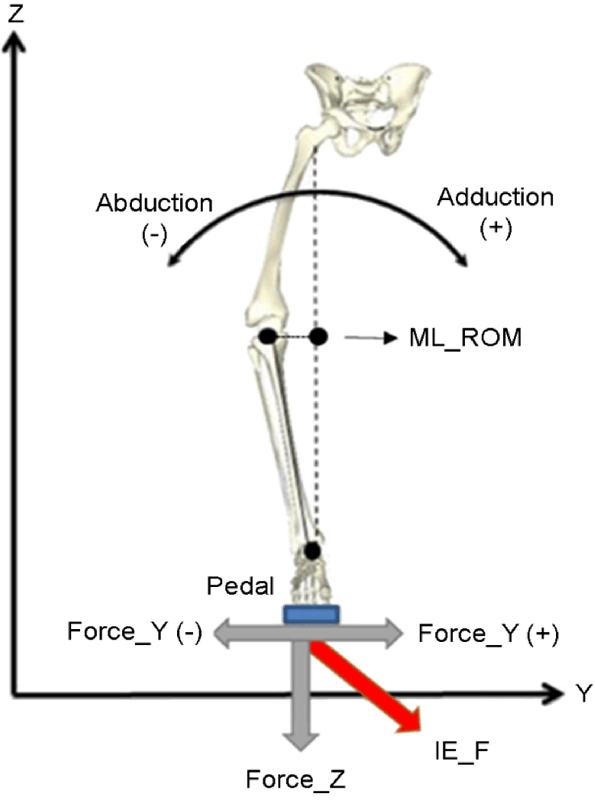 Knee range of motion and pedal Force in the frontal plane