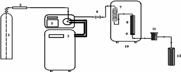 Schematic diagram of the GAS process: (1) CO 2 cylinder
