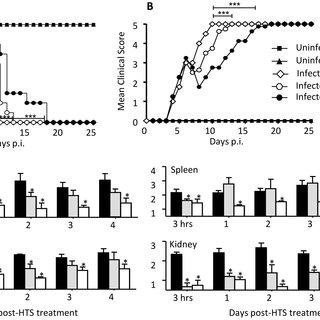 (PDF) Hypertonic Saline Reduces Vascular Leakage in a