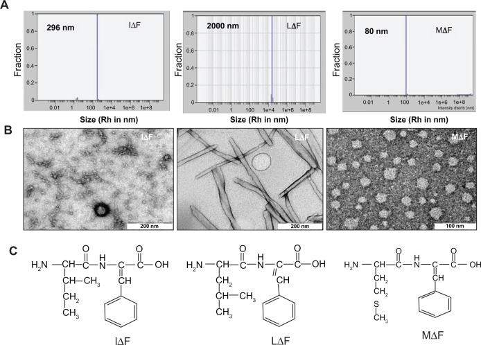 Self-assembly of dipeptides into NPs in aqueous solution