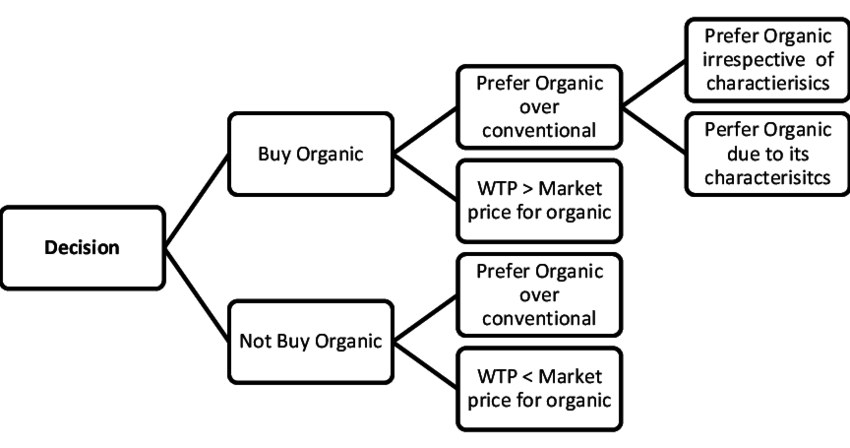 SCHEMATIC DIAGRAM OF THE DECISION TREE OF A CONSUMER TO