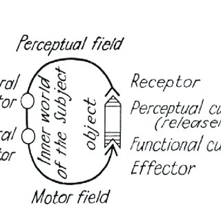 (PDF) Cybersemiotic medicine: A framework for an