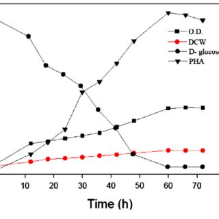Production of PHB by a batch culture of Bacillus cereus