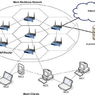 Wireless Mesh Network with Authentication Server