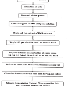 Flow chart of preparation wine from pomegranate also download rh researchgate