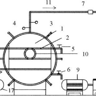 Schematic diagram of the vacuum dryer system. (1) Drying