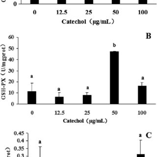 (PDF) Effects of catechol on growth, antioxidant enzyme