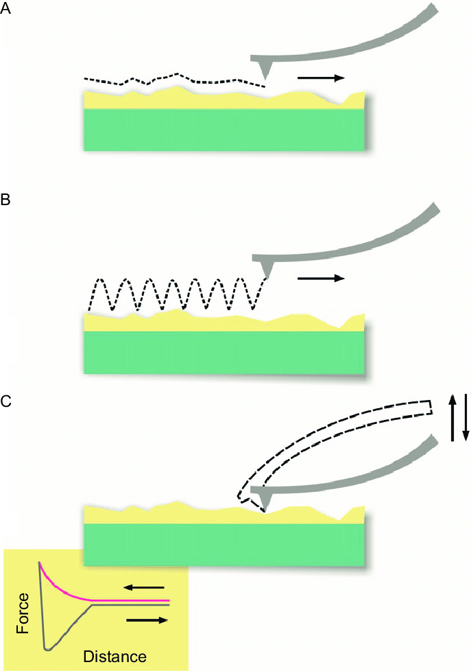 2 Diagrams of different AFM operating modes. (A) Contact mode and (B)... | Download Scientific Diagram