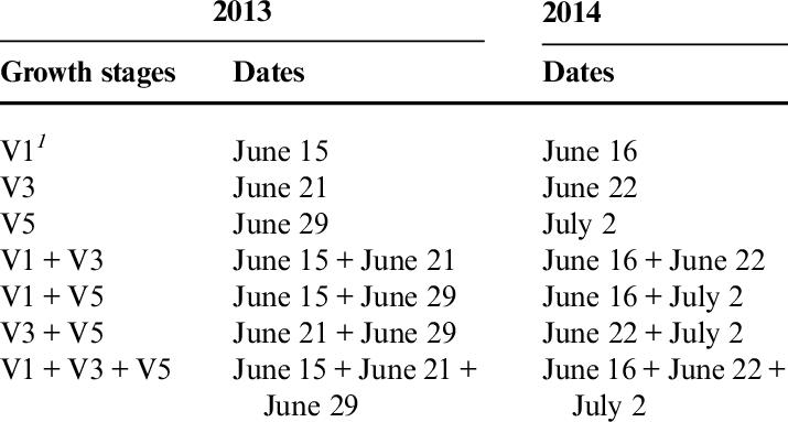 Grit application dates at corn vegetative corn growth