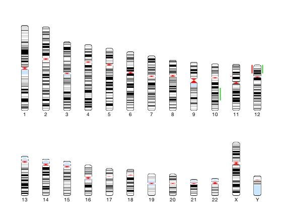 83 questions with answers in Copy Number Variation