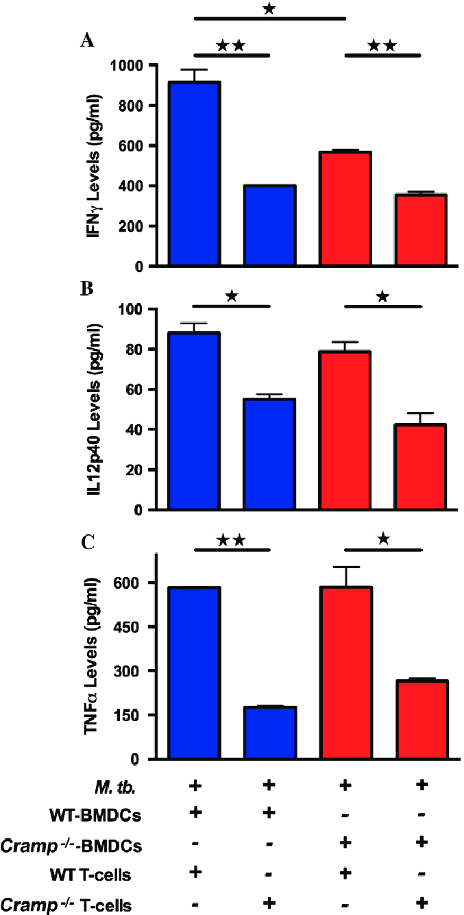 hight resolution of cramp mice have restricted t cell responses to mycobacterium download scientific diagram