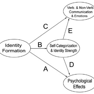 (PDF) The Effects of Team Identity Formation and Sport