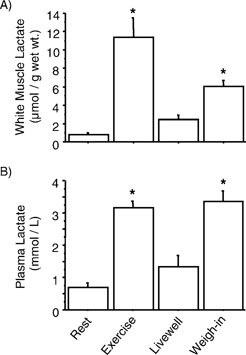 medium resolution of  a white muscle lactate and b plasma lactate for walleyes at download scientific diagram