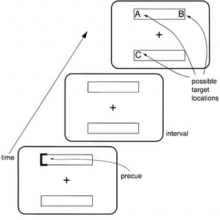 Sample visual search task in which observers search for a