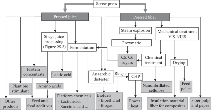 1 Flow chart showing process steps for pressed juice and