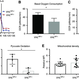 (PDF) Von Hippel-Lindau Acts as a Metabolic Switch