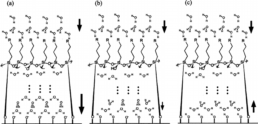 Schematic structural models of interfacial water molecules