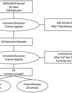 Flow chart of the systematic review literature data also download rh researchgate