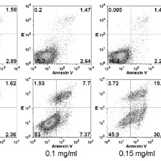 Apoptosis Assay Using Flow Cytometry after Annexin V-FITC