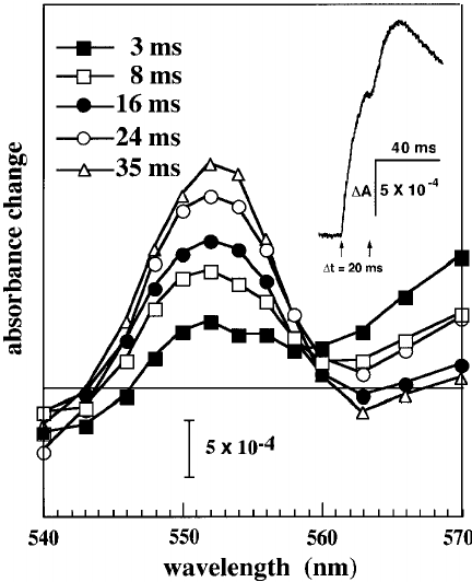 Effect of temperature on the kinetics of cytochrome c