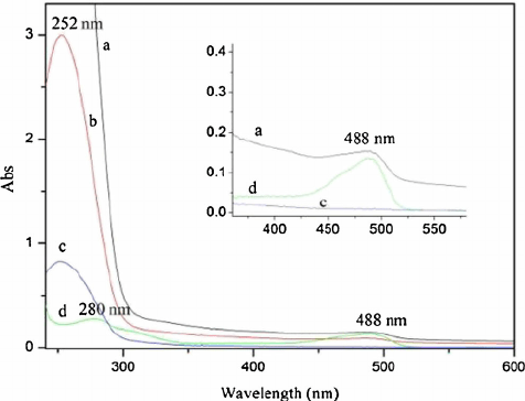 UV-vis absorption spectra of cell lysate in aqueous