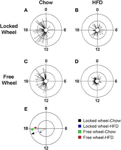 Wheel-running activity alters the eating behavior rhythm
