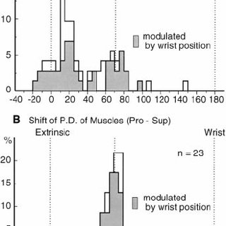 (PDF) Kakei, S., Hoffman, D.S. & Strick, P.L. Muscle and