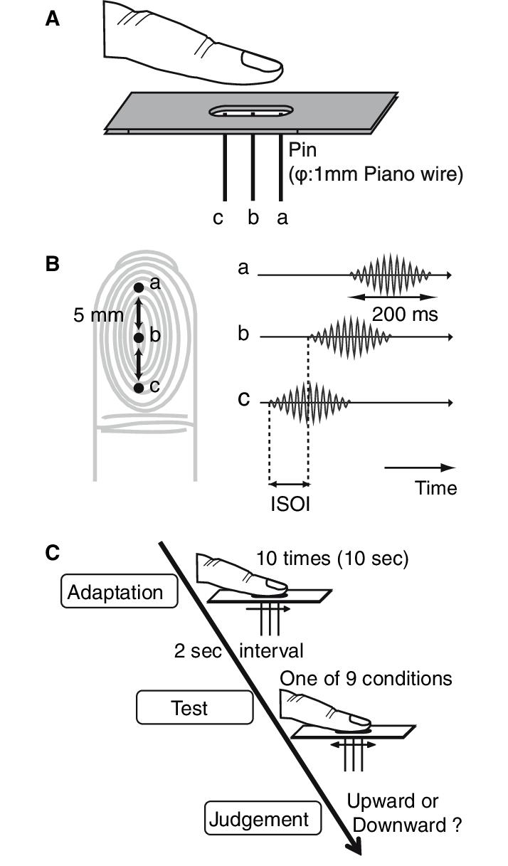 medium resolution of b time chart c experimental procedure
