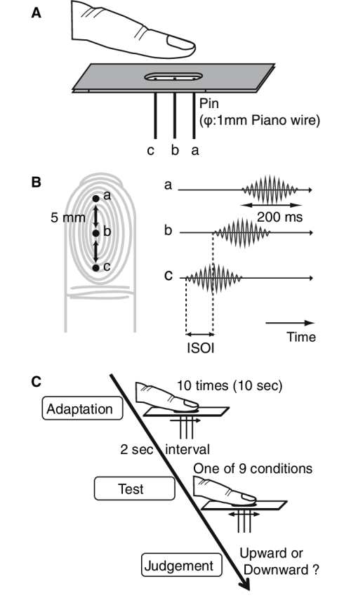 small resolution of b time chart c experimental procedure