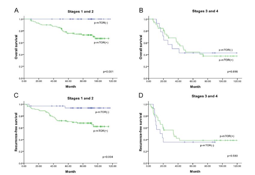 Kaplan-Meier survival curves for triple negative breast ...