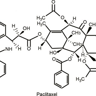 Anti-cancer actions of paclitaxel. Note: By stabilizing