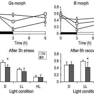 Effects of light stress on the photochemical efficiency