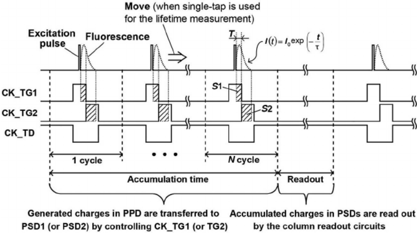 Timing diagram for operating two-tap CMOS lock-in pixel