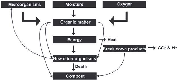 1 Schematic diagram representation of compost process
