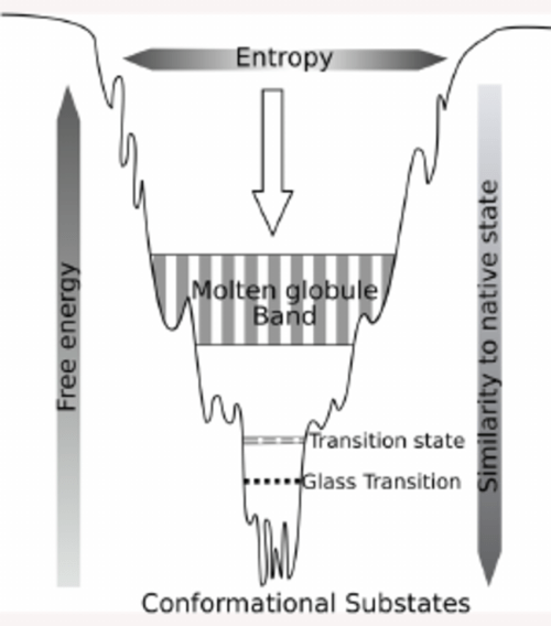 small resolution of a rugged funnel like free energy landscape that describes the detailed processes and various intermediates
