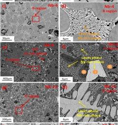 sem micrographs of as cast cocrcufeni 100 xnbx alloys a [ 850 x 1454 Pixel ]