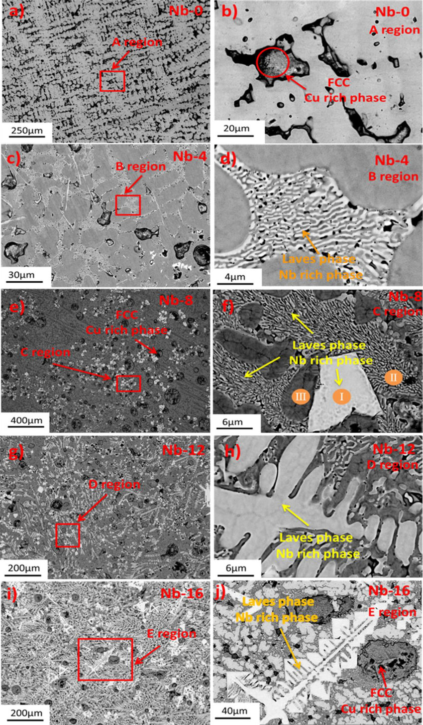 hight resolution of sem micrographs of as cast cocrcufeni 100 xnbx alloys a