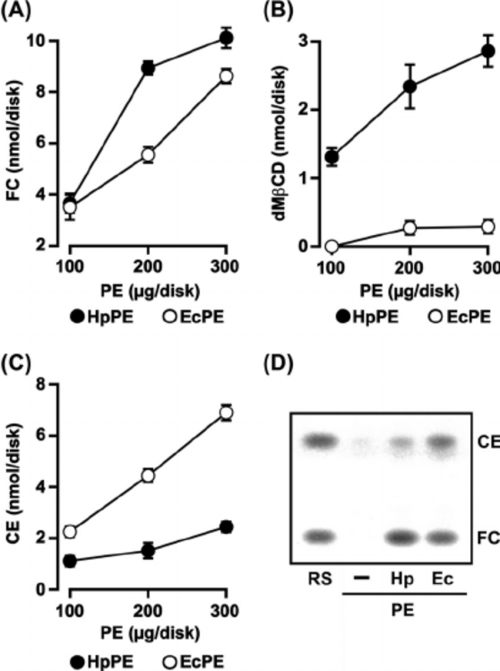small resolution of characterization of h pylori pe in interaction with fc dm cd and
