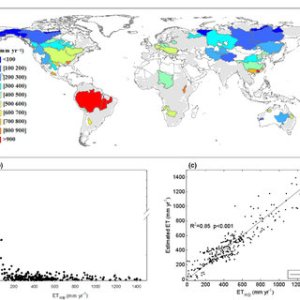 Interannual variability of global land ET anomaly and