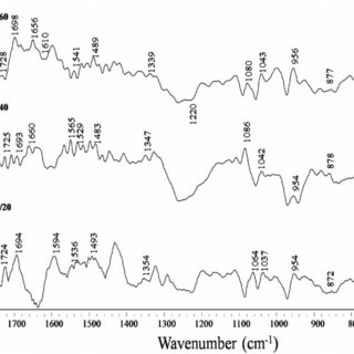 FTIR spectra of free calf thymus DNA and its complexes