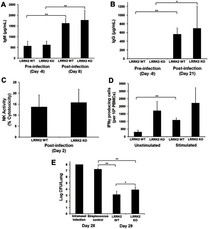 The average level of serum influenza-specific IgM and IgG