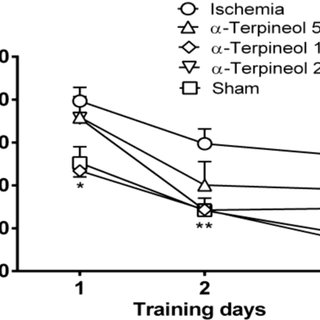 Effect of α-terpineol on time spent in target quadrant in