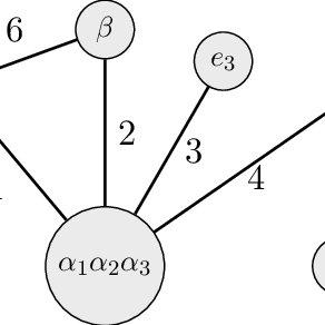 (PDF) Brauer Graph Algebras