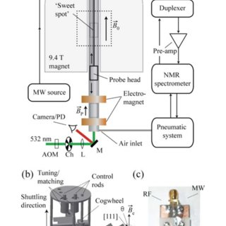 (PDF) Multispin-Assisted optical pumping of bulk C 13