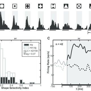 (PDF) Shape Selectivity in Primate Frontal Eye Field