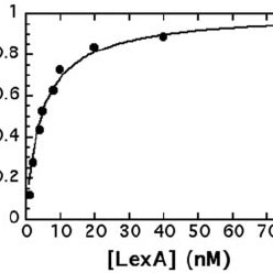 Sequence requirements for LexA binding. The preferred half