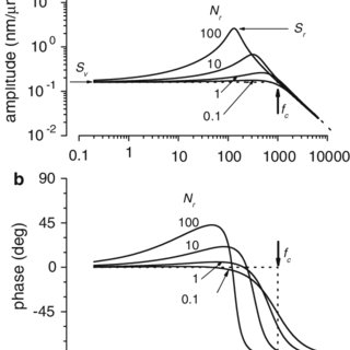 Cupular displacement amplitude (a) and phase (b) measured