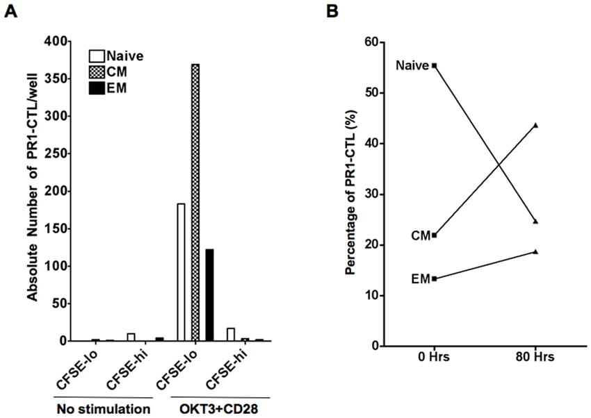 The phenotype of PR1-CTL changes from predominantly naïve